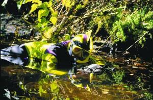 Amphibiographer Scw7cwlk