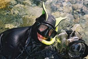 AmphibiographerLynn Ck